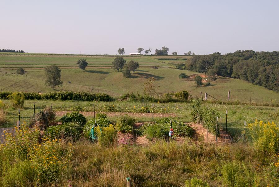 Garden on August 12th