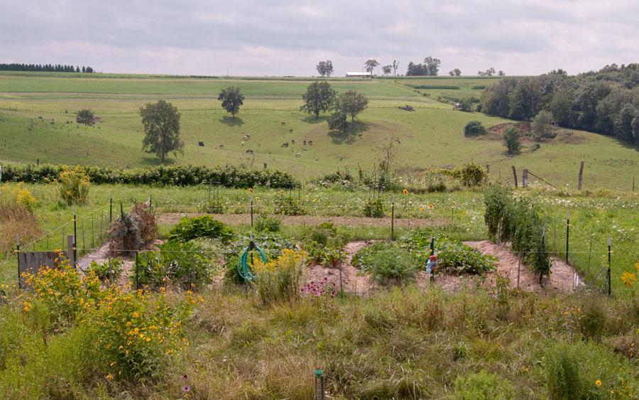 Garden on August 16th