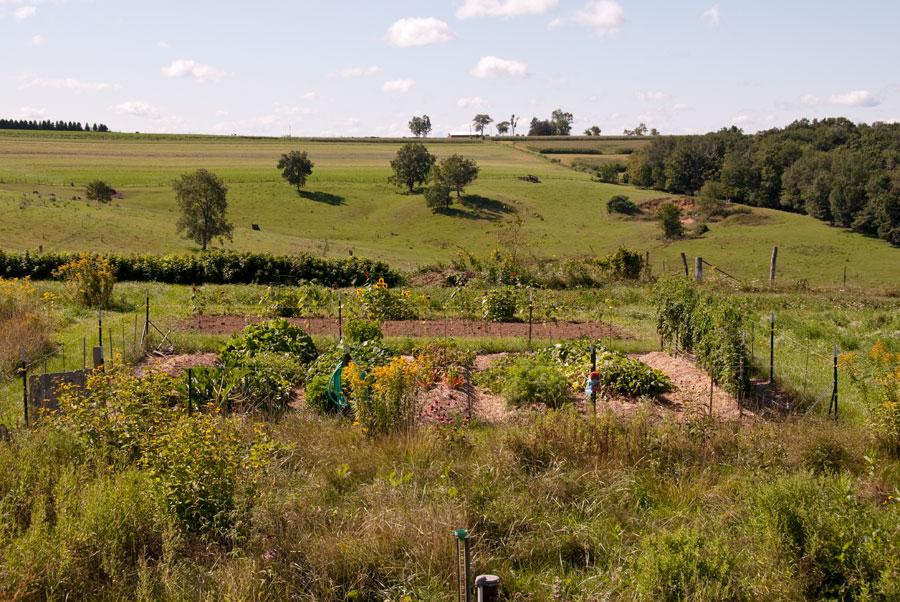 Garden on August 30th