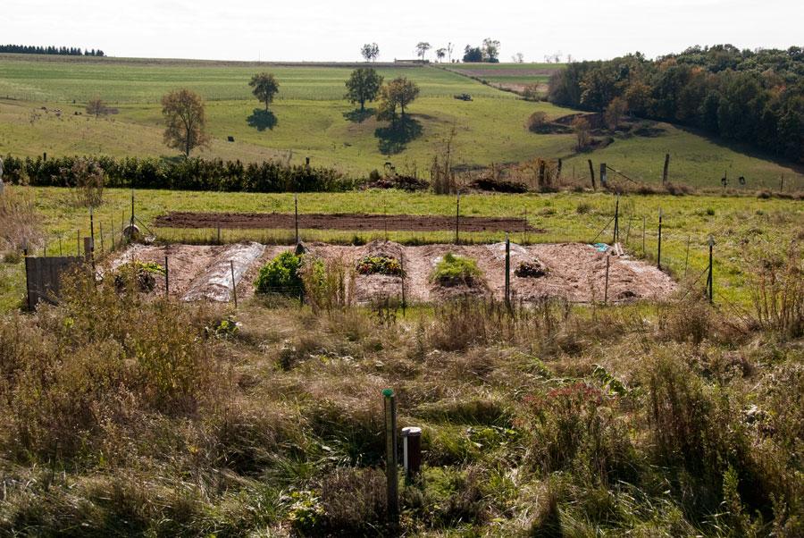 Garden on October 11th