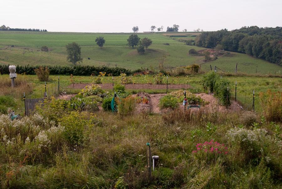 Garden on September 20th
