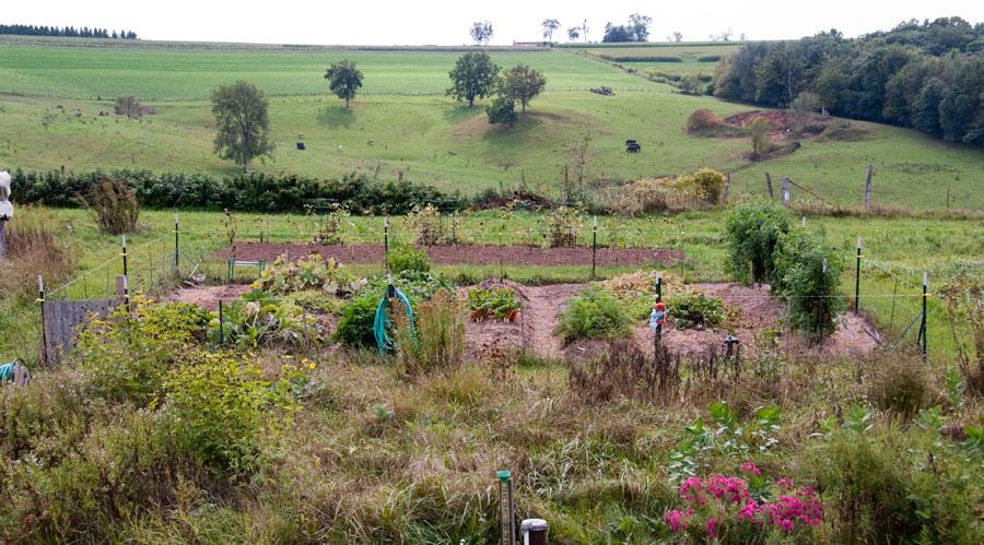 Garden on September 27th