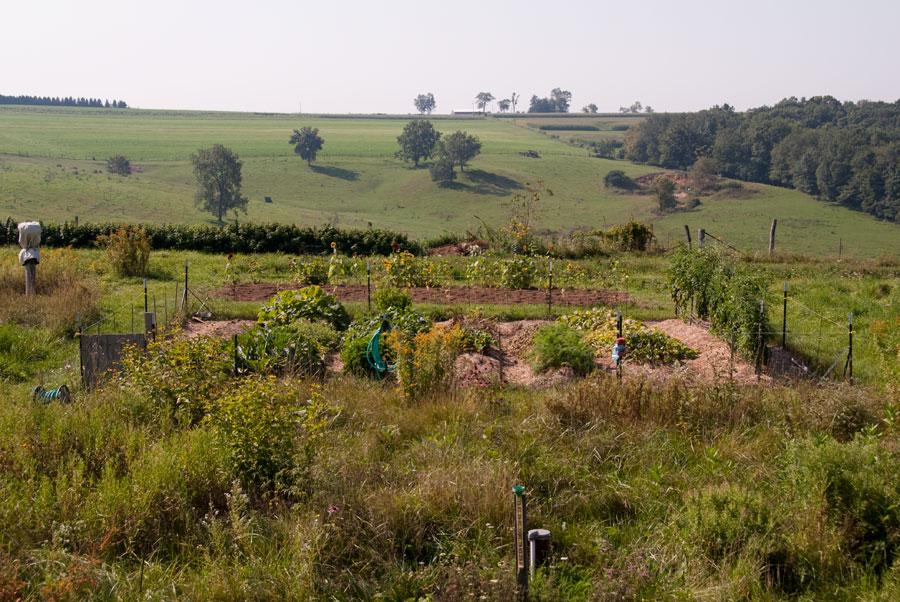 Garden on September 7th