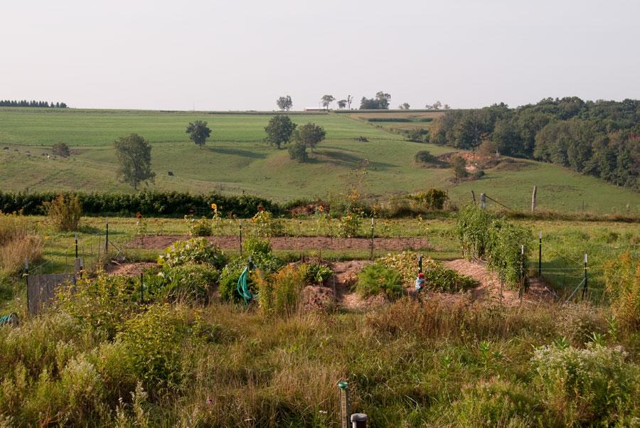 Garden on September 12th