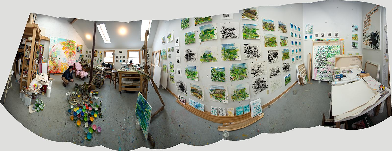 Arista Studio 2013
